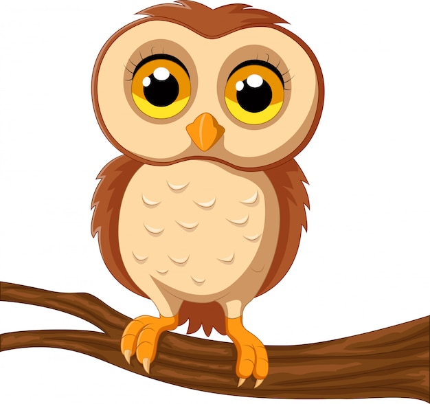 Симпатичная сова на ветке дерева