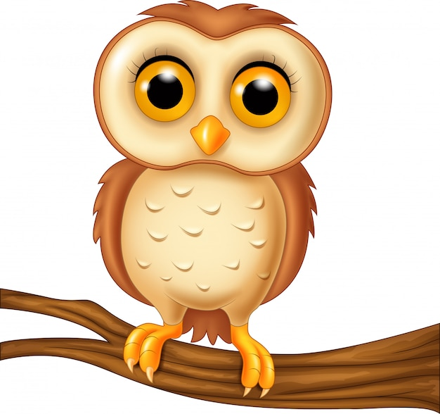 漫画面白いフクロウの鳥