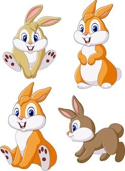 かわいいウサギのコレクションは、白い背景に