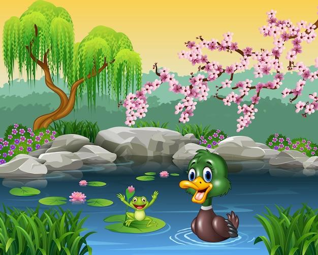 カエルと一緒に泳ぐかわいいアヒル