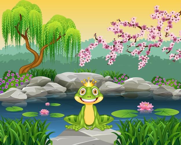 かわいい小さなカエルは、岩の上に座って