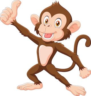 かわいい猿は、親指を上げて、白い背景に