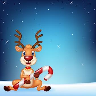 Симпатичные олени, проведение рождественские конфеты на фоне ночного неба