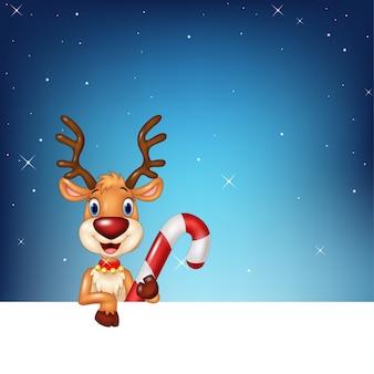 Симпатичные олени, проведение пустой знак и рождественские конфеты