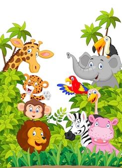 ジャングルの漫画コレクション幸せな動物