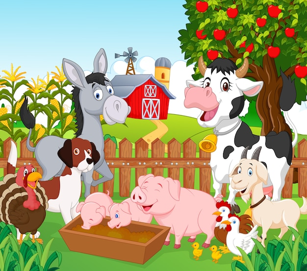 Коллекция животных на ферме