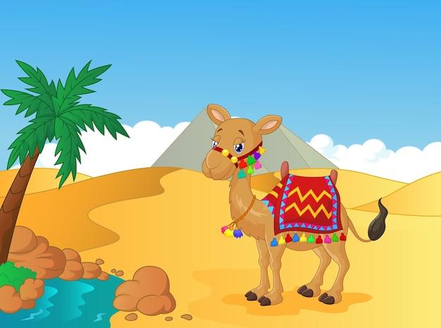 Мультфильм, украшенный верблюдом