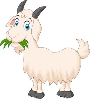 草を食べる漫画山羊