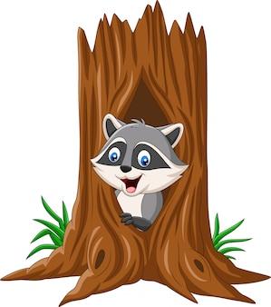 Мультяшный енот сидит в дупле дерева