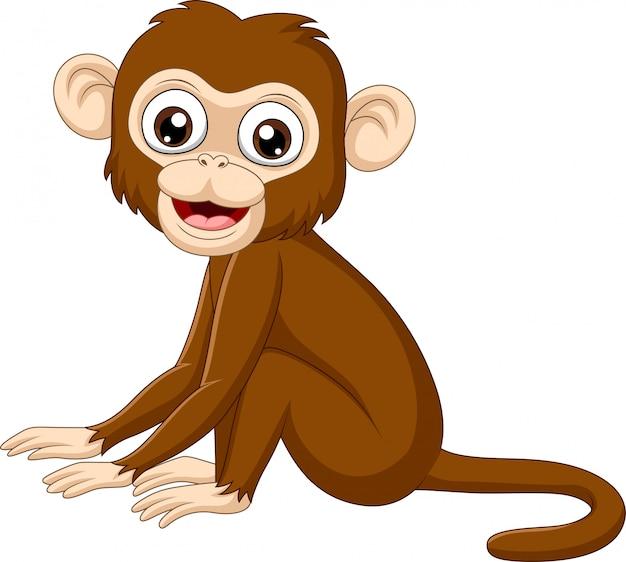 座っているかわいい赤ちゃん猿