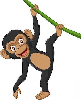 Мультяшный малыш шимпанзе висит на ветке дерева