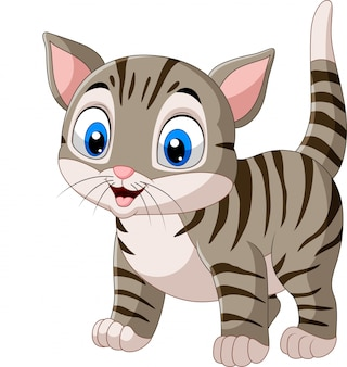 カットイラスト、面白い猫