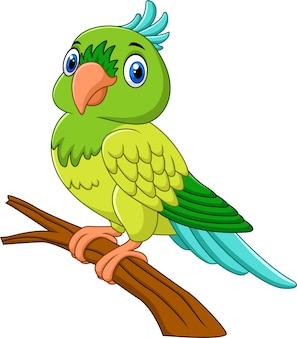 Мультяшный попугай на ветке дерева