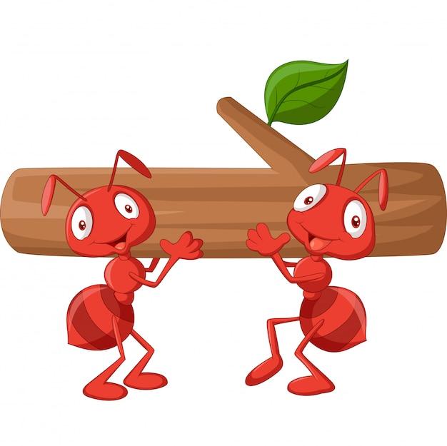 Команда муравьев несет бревно