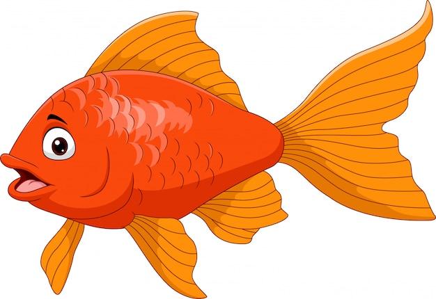 Мультяшная золотая рыбка на белом