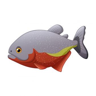 Мультфильм рыба пиранья, изолированные на белом