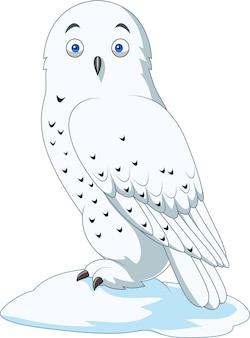 白い背景で隔離された漫画の北極フクロウ