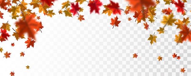 Осенние листья падают фон
