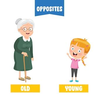 Противоположные прилагательные с рисунками мультфильма