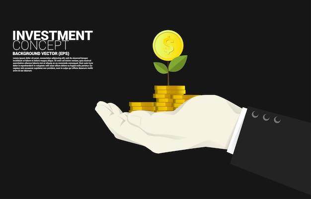 実業家の手でスタックコインドルの上部にある小さな金のなる木。成功投資とビジネスの成長