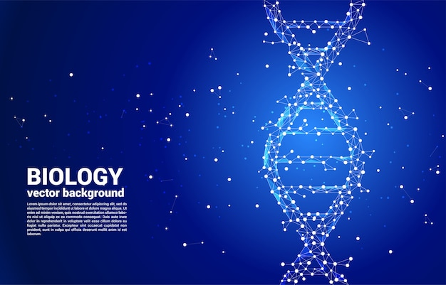 Генетическая структура днк вектора от точки соединяет линию полигон. фон концепции для биотехнологии и биологии научных.