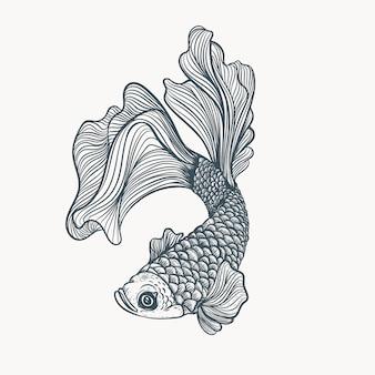 Рисованной иллюстрации рыбы
