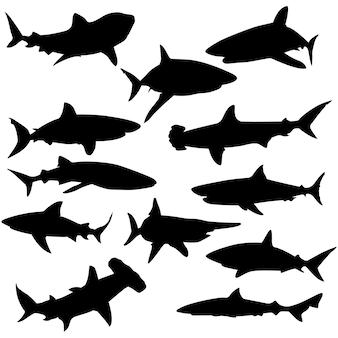 サメの水動物のクリップアートシルエットベクトル
