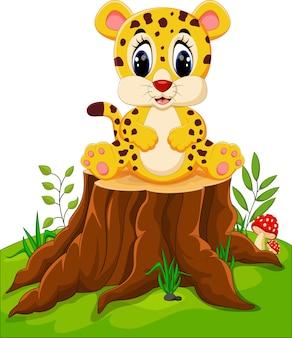 木の切り株に座っているかわいい赤ちゃんのチーター
