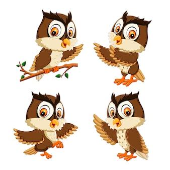フクロウの鳥の漫画のコレクションを設定