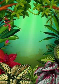 アグロメナの葉と木