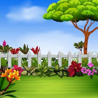 フェンスと花のある庭
