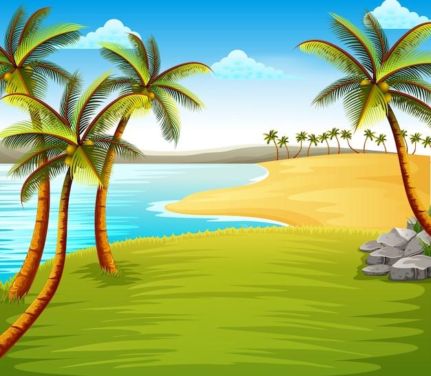 緑の畑の近くの海岸にいくつかの椰子の木がある美しい熱帯のビーチの眺め