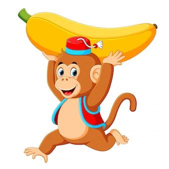 Цирковая обезьяна играет с бананом