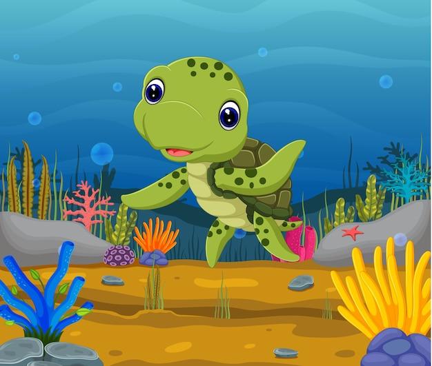 水中のカメ亀