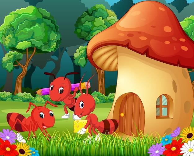 Много муравьев и грибной дом в лесу