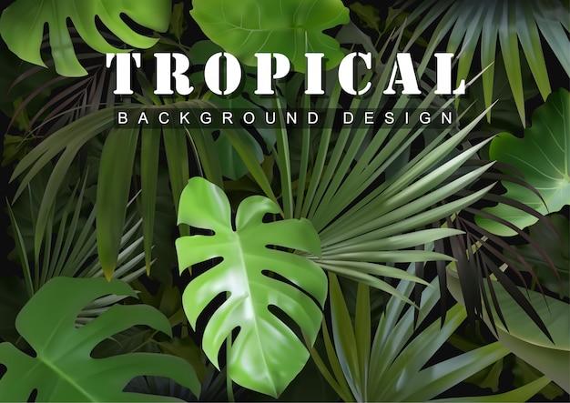Тропический фон с растениями джунглей