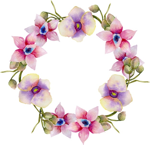 水彩のピンクと紫の蘭の花輪