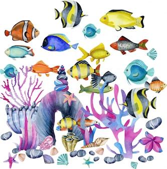 Иллюстрация акварель тропических экзотических рыб океанических