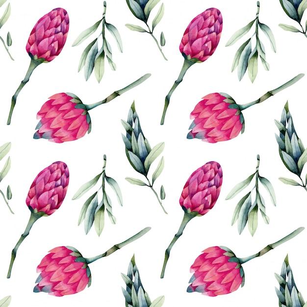 Акварель розовые цветы протея, зеленые ветви бесшовные модели