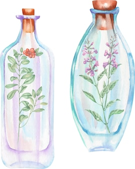 サルビアの花とコケモモの枝と水彩のボトル