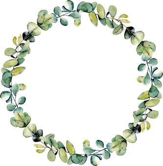 ユーカリの枝を持つ花輪は、水彩画のイラスト