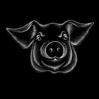 手描き豚頭イラスト