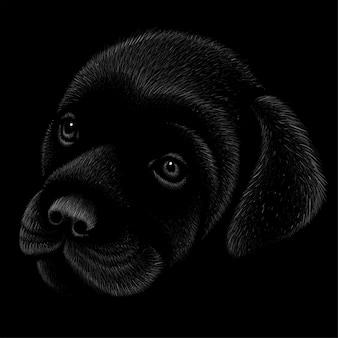 子犬犬の頭のデッサンイラスト