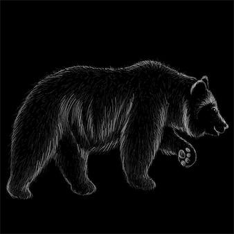 クマのチョークスタイルで手描きイラスト