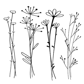 手描き植物セット、落書き花要素、ベクトルイラスト。