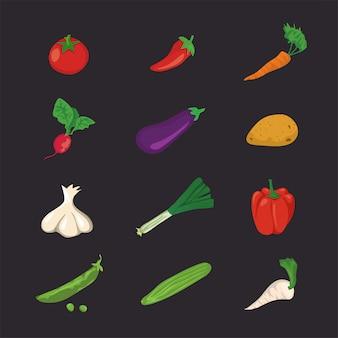 野菜のアイコン