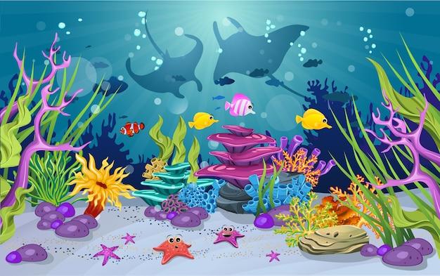 海洋生息地とサンゴ礁の美しさ