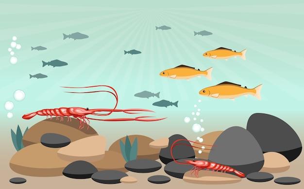 エビや魚は川の中を自由に泳いで、周りには岩があります
