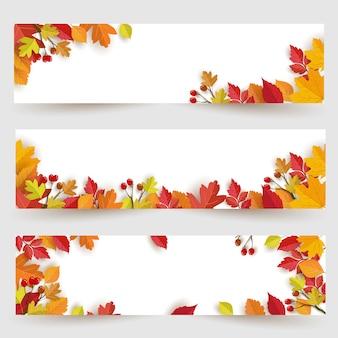 秋のデザインと葉のパノラマバナーの背景