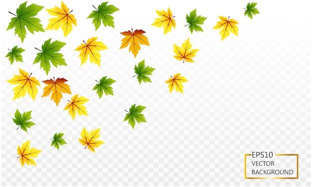 透明な背景に赤い秋のカエデの葉のデザイン